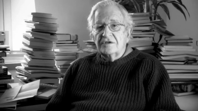 Photo of What is the Purpose of Education? Noam Chomsky has Something to Say About That