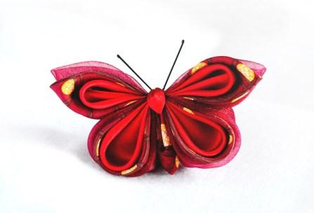 fluture-andra