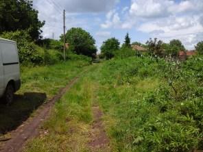 Lane to Alex house-2