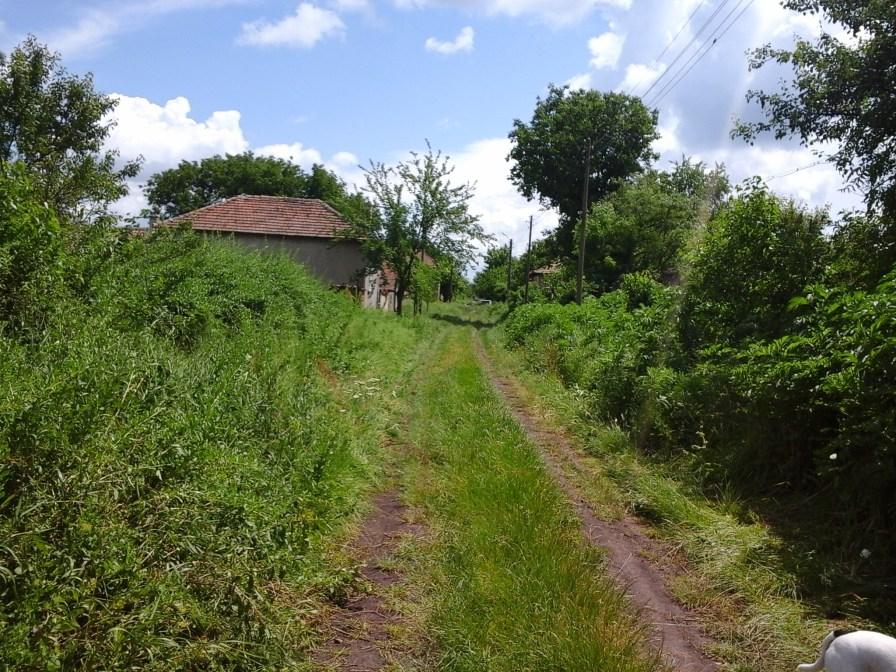 Lane to Ilias house-2
