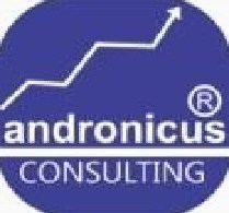 Salesperson at Andronicuz Consulting