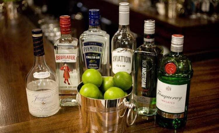 """Geriausi """"Gin-Tonic"""" receptai: maisto gaminimo ypatybės. Drink Gene Tonic: žala ar malonumas"""