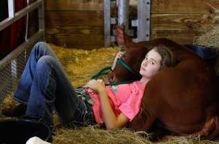 Madi Carter, 12, rests with her cow, Crystal, before competing at the Georgia National Fair in Perry, Georgia, on Saturday, October 7, 2017. Carter was inspired to show cattle by her grandfather who has been competing since childhood. (Photo/Chamberlain Smith)