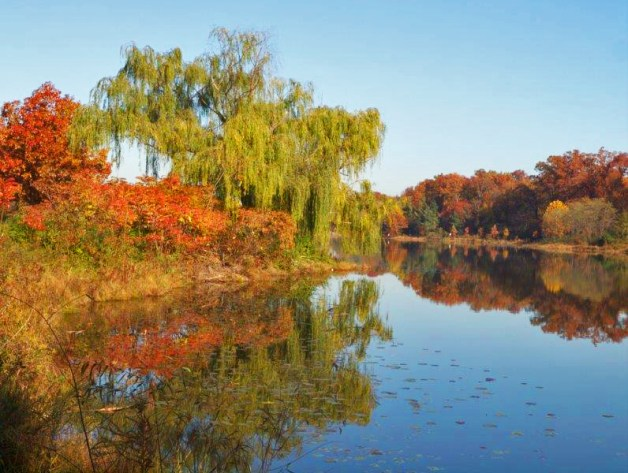 Lake Artemesia in fall color