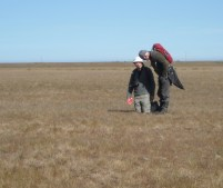 """Dryland botany """"Here be something and it's very, very small"""""""