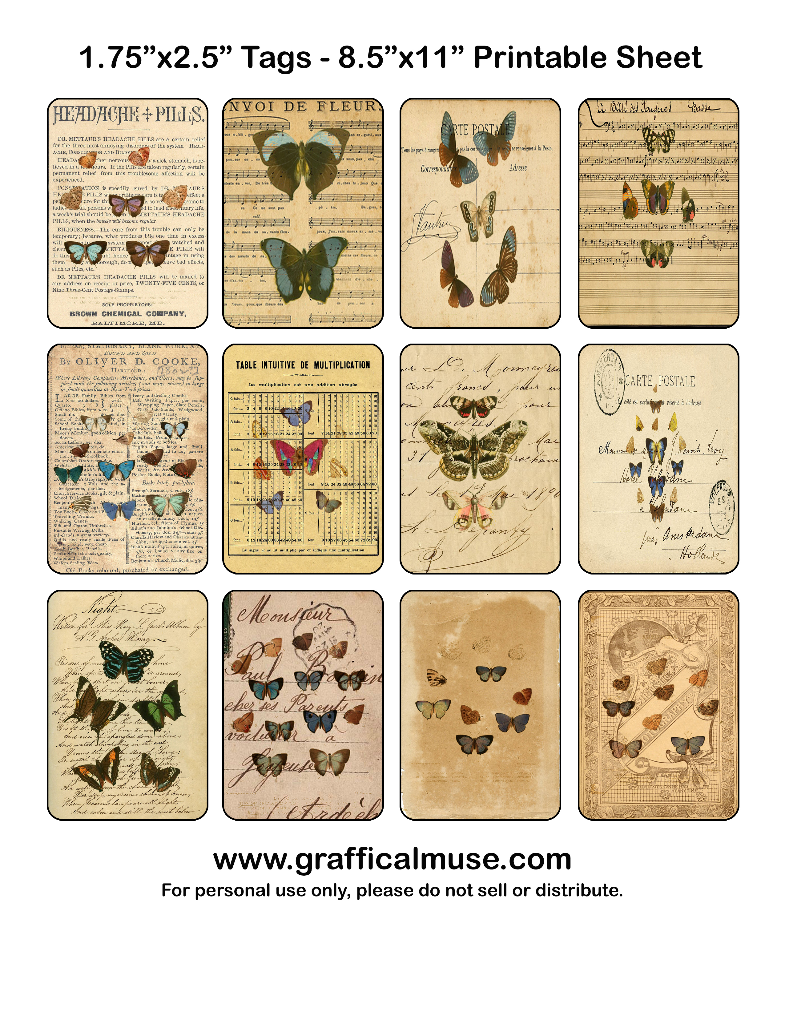 Images About Images Bugs Amp Butterflies