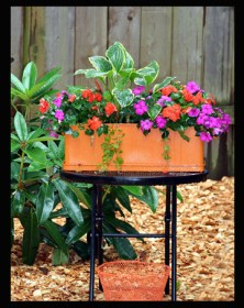 PLANTER OF IMPATIENS IN THE REAL