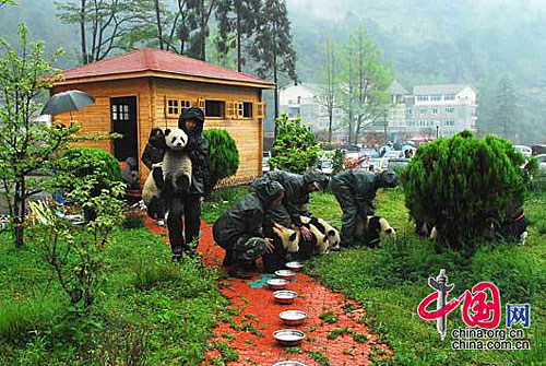 After the quake in Wolong..temporary housing for babies