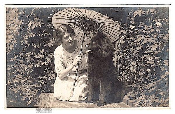 Chow postcard parason lady eb - Version 2