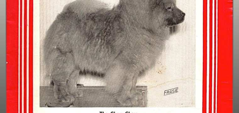 THE DOG NEWS- CHOW COVER COLLECTION  courtesy the CCCI