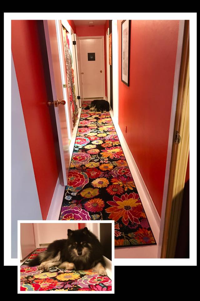 onni-hall-floor-painte
