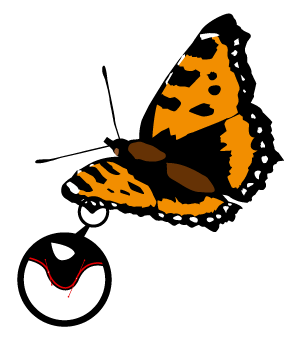 A vector image of a butterfly