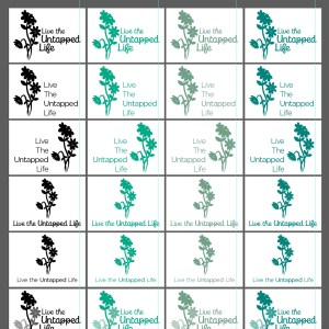 Untapped Life Flowers iterations