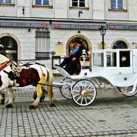 Kraków Rynek Polska dorożka konie woźnica bruk