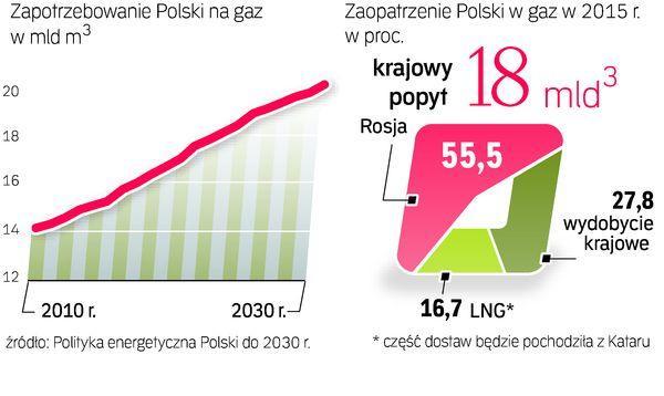Rosja pozostanie głównym dostawcą gazu