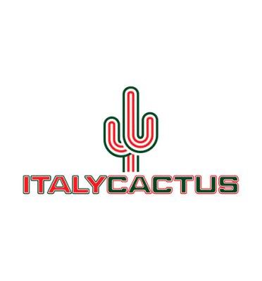 italy cactus