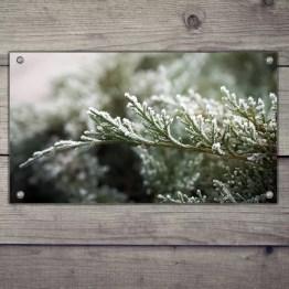 Tuinposter eigen foto