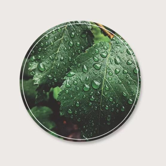 Tuincirkel regen