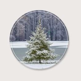 Wooncirkel Denneboom