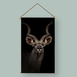 Poster antilope