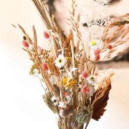 Spring droogbloemen