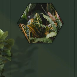Akoestische hexagon groene bladeren