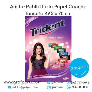 AFICHE PUBLICITARIO COMERCIAL GRANDE COUCHE FULL COLOR ECONOMICO BARATO GRAFPERU LIMA PERU