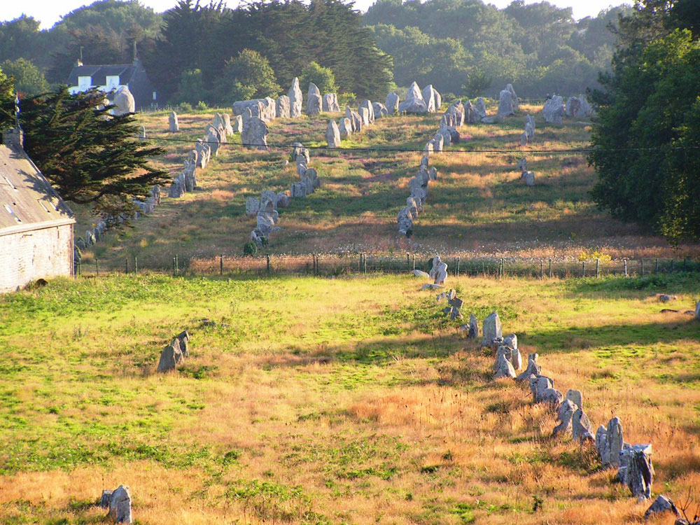 Fig. 8. Some of the 10,000 standing stones of Carnac, Britanny, France.