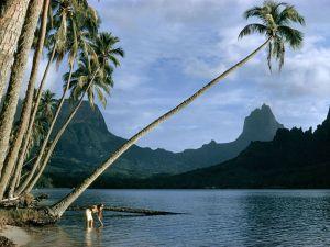 island-tahiti_13346_990x742