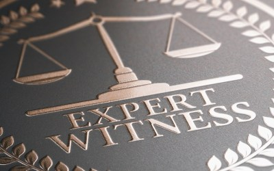 THE EXPERT WITNESS EPISODE 3