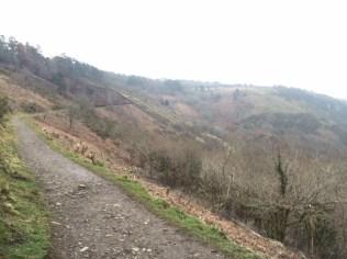 path along a hillside