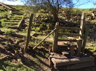 A stile with three steps