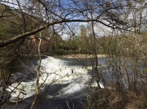 stunning river