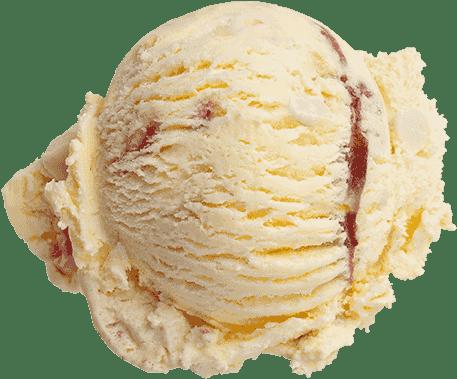 Homemade Ice Cream (3 Scoops)
