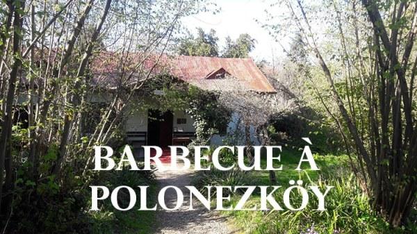 un barbecue dans le village polonais de polonezkoy en turquie près d'istanbul