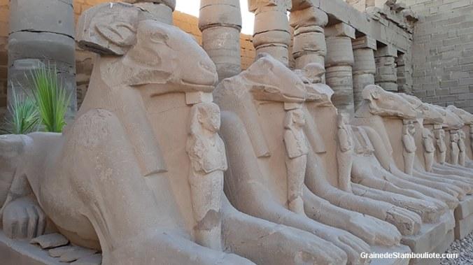 temple de Karnak, Louxor, Thèbes, Egypte, allée de sphinx