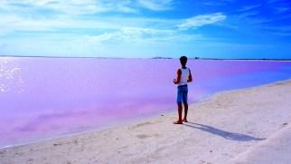 las-coloradas-lac-rose