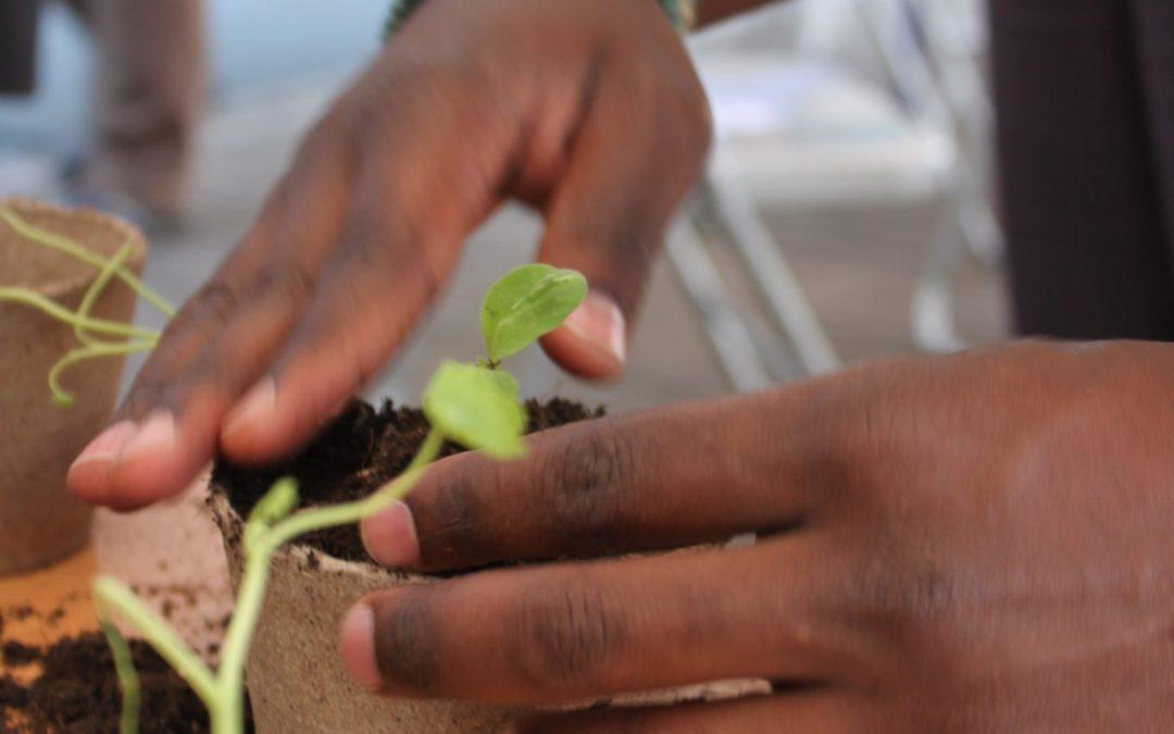 Conception participative du jardin thérapeutique pour le centre de détention de Villars (GE)