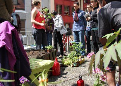 """Création et organisation des cours """"Pimp your balcony : un coach, un kit et vos légumes pour l'été"""""""