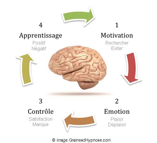 circuit recompense addictions hypnothérapeute séance hypnose paris 15