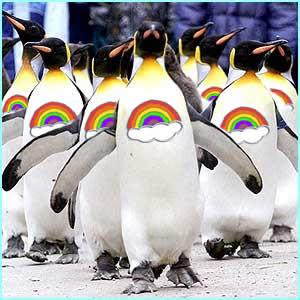 rainbowpenguins