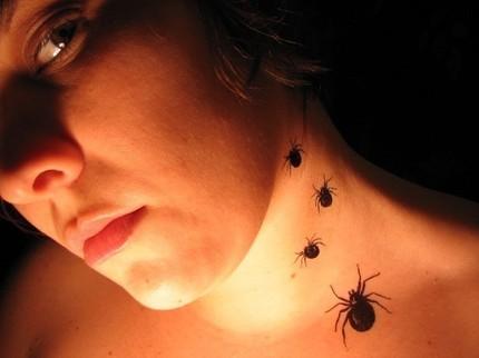 spidertattoo