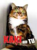 kakji-un-tu-128_original.jpg