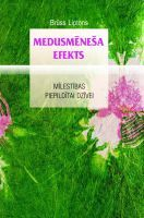 medusmenesa_efekts_original.jpg