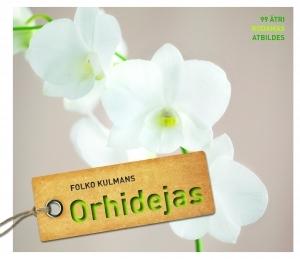 orhidejas_original.jpg