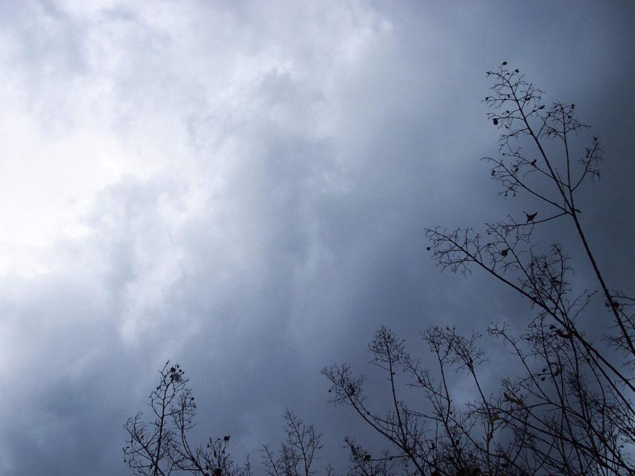 והגשם יבוא (Águas de Março, em Hebraico)