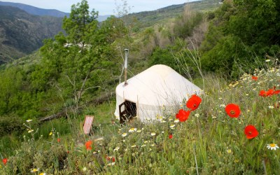 Glorious Glamping in La Taha Valley