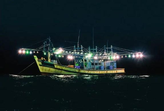 squid night fishing