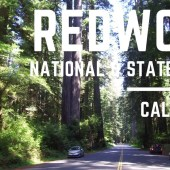 Episode 53: Redwood National Park | California RV camping travel