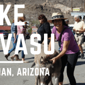Episode 78: Lake Havasu and Oatman | Arizona RV travel camping